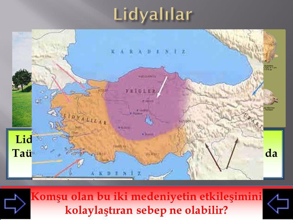 Lidyalılar Lidyalılar, Frigler gibi Taümülüs tipi mezarlar yapmışlarıdır. Yine Friglerdeki işçiliği, Lidyalılarda da görebiliyoruz.