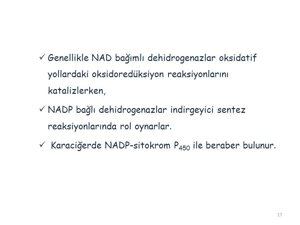 Karaciğerde NADP-sitokrom P450 ile beraber bulunur.