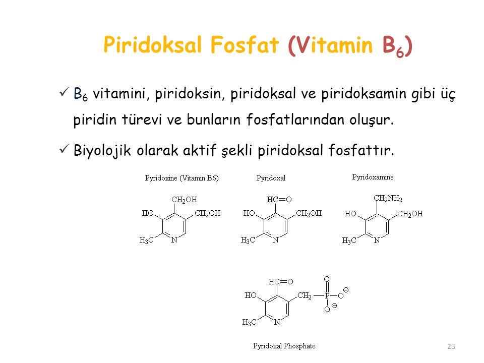 Piridoksal Fosfat (Vitamin B6)