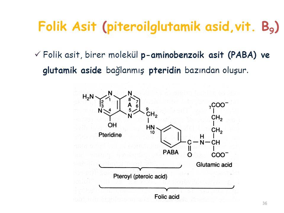 Folik Asit (piteroilglutamik asid,vit. B9)