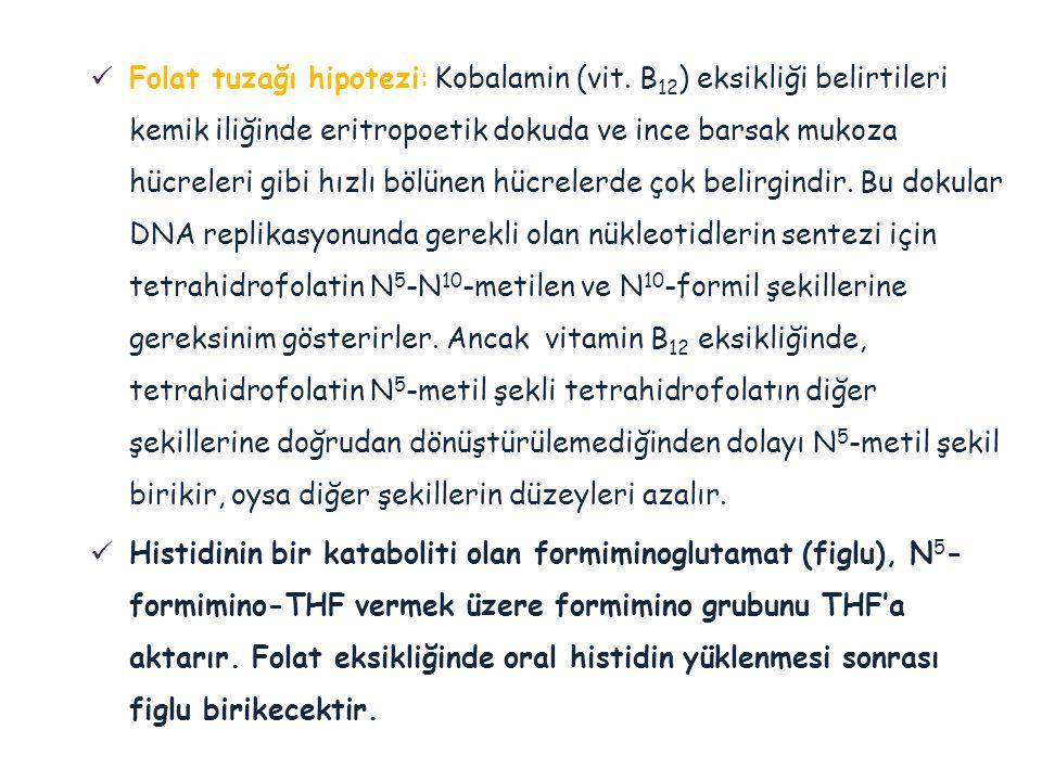 Folat tuzağı hipotezi: Kobalamin (vit