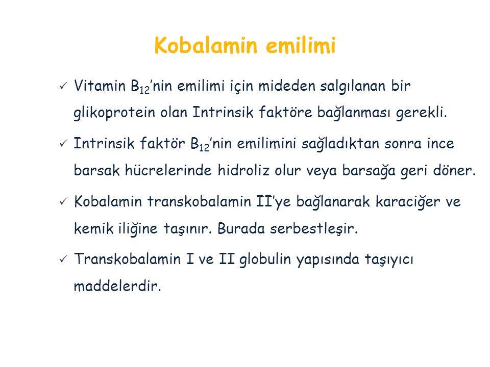 Kobalamin emilimi Vitamin B12'nin emilimi için mideden salgılanan bir glikoprotein olan Intrinsik faktöre bağlanması gerekli.