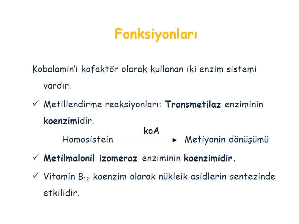 Fonksiyonları Kobalamin'i kofaktör olarak kullanan iki enzim sistemi vardır. Metillendirme reaksiyonları: Transmetilaz enziminin koenzimidir.