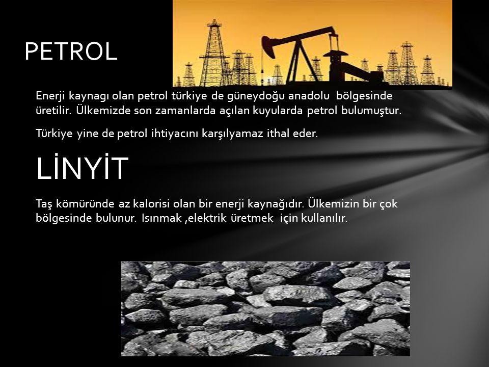 PETROL Enerji kaynagı olan petrol türkiye de güneydoğu anadolu bölgesinde üretilir. Ülkemizde son zamanlarda açılan kuyularda petrol bulumuştur.