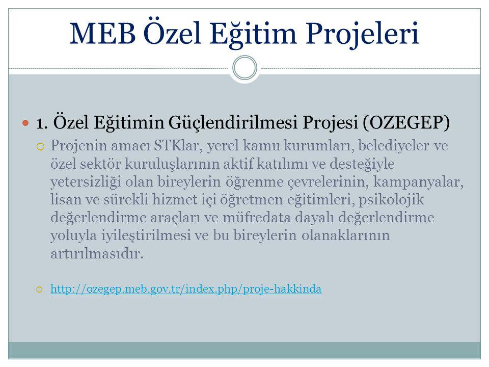 MEB Özel Eğitim Projeleri