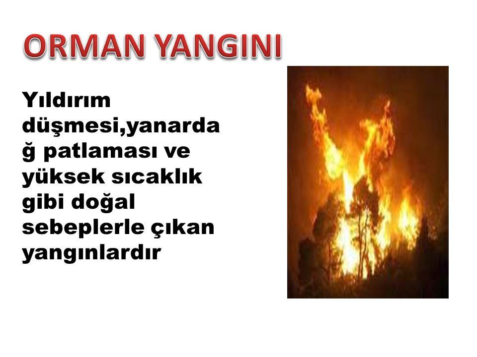 ORMAN YANGINI Yıldırım düşmesi,yanardağ patlaması ve yüksek sıcaklık gibi doğal sebeplerle çıkan yangınlardır.