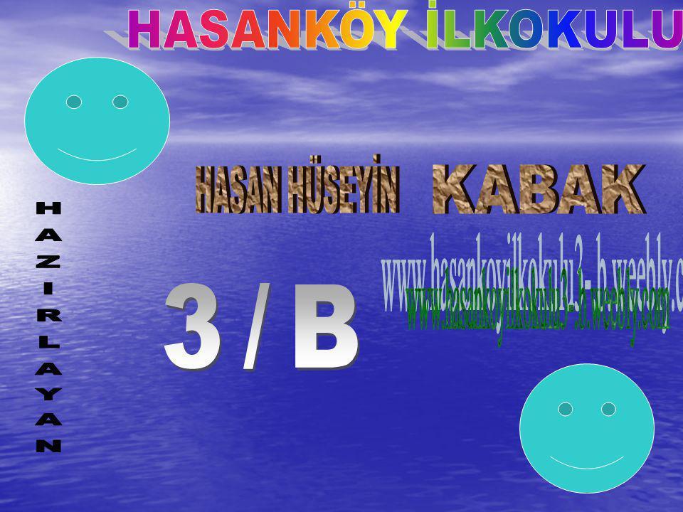 HASANKÖY İLKOKULU HASAN HÜSEYİN KABAK www.hasankoyilkokulu3-.b.weebly.com 3/B HAZIRLAYAN