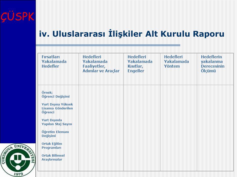 ÇÜSPK iv. Uluslararası İlişkiler Alt Kurulu Raporu