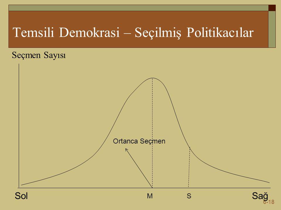 Temsili Demokrasi – Seçilmiş Politikacılar