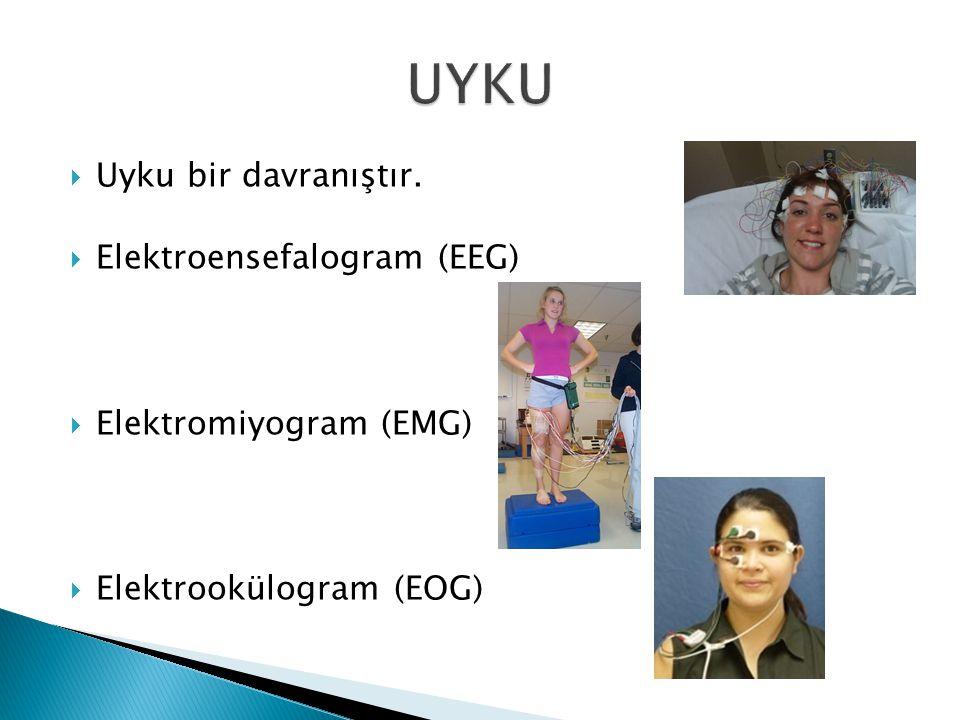 UYKU Uyku bir davranıştır. Elektroensefalogram (EEG)