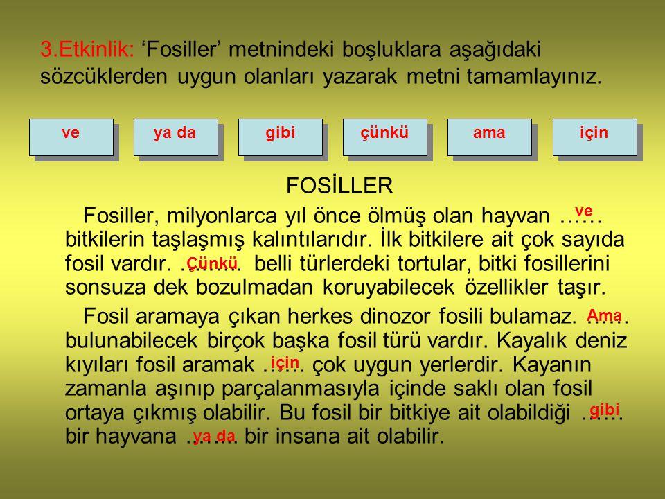 3.Etkinlik: 'Fosiller' metnindeki boşluklara aşağıdaki sözcüklerden uygun olanları yazarak metni tamamlayınız.