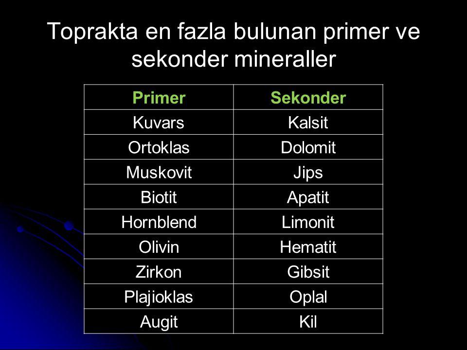 Toprakta en fazla bulunan primer ve sekonder mineraller