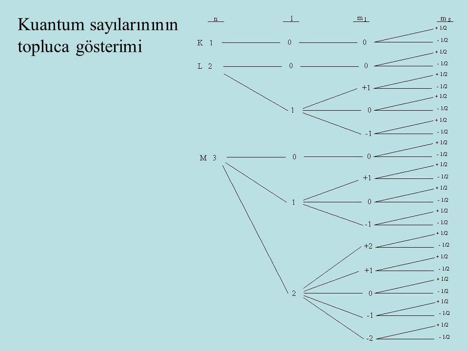 Kuantum sayılarınının