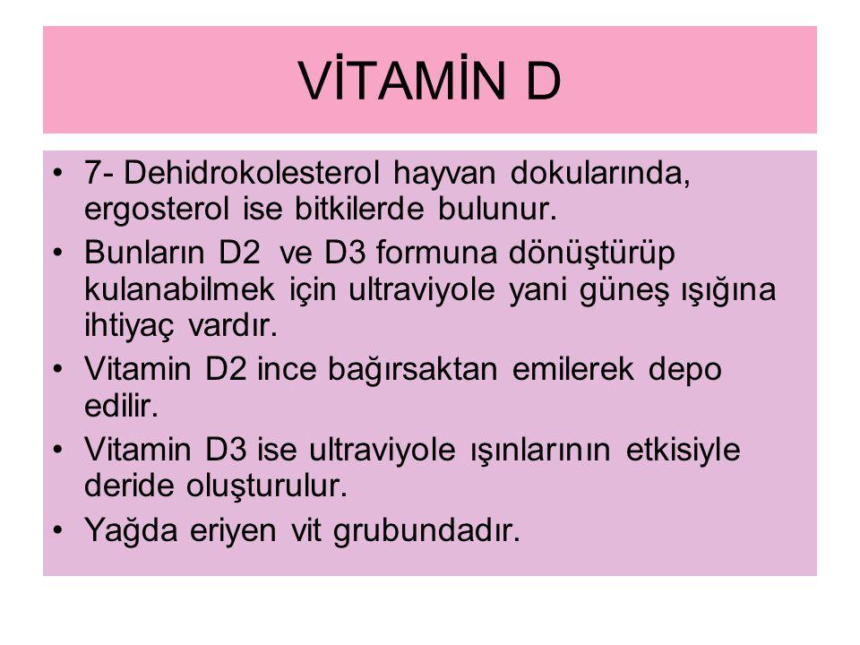 VİTAMİN D 7- Dehidrokolesterol hayvan dokularında, ergosterol ise bitkilerde bulunur.