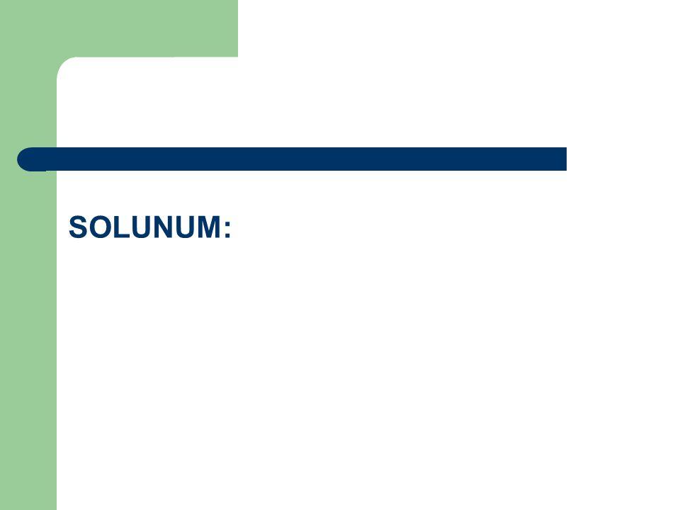SOLUNUM: