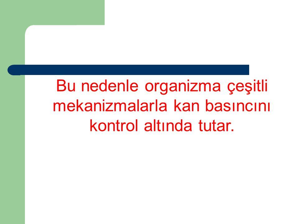 Bu nedenle organizma çeşitli mekanizmalarla kan basıncını kontrol altında tutar.