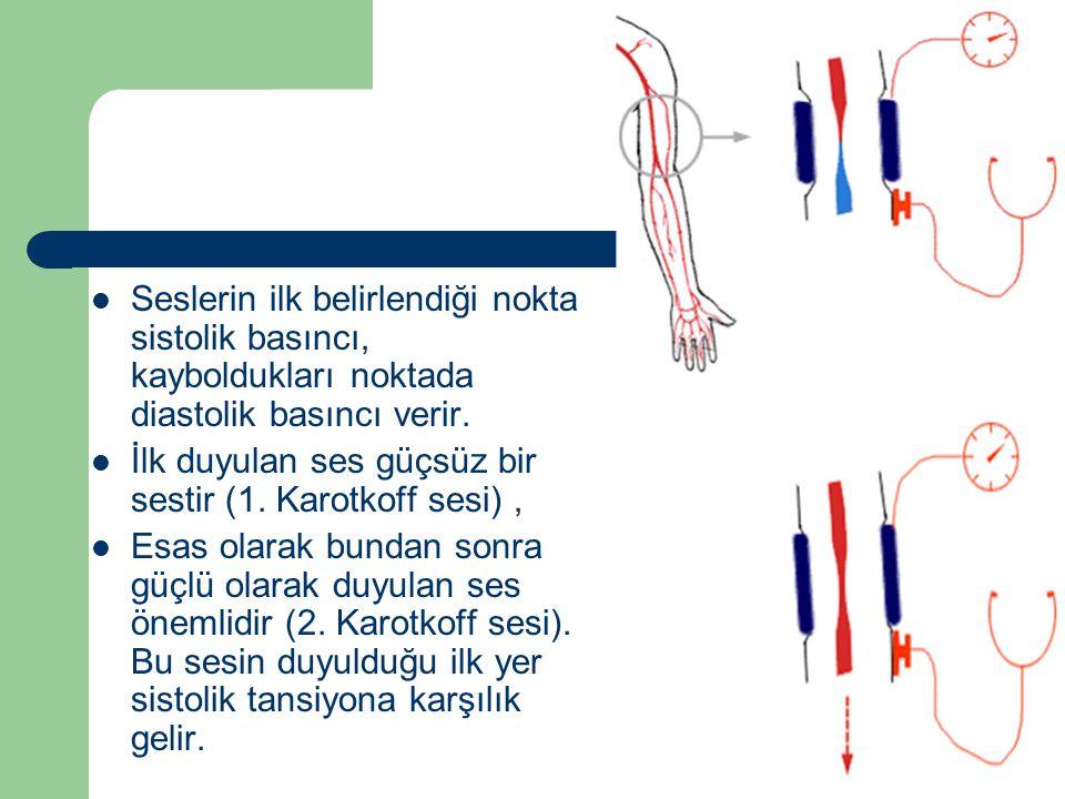 Seslerin ilk belirlendiği nokta sistolik basıncı, kayboldukları noktada diastolik basıncı verir.