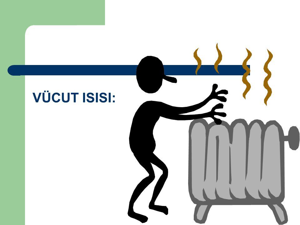 VÜCUT ISISI: