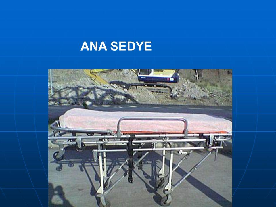 ANA SEDYE
