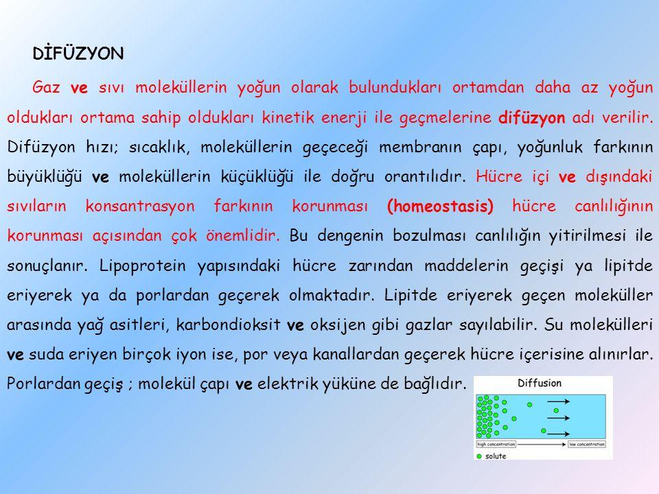 DİFÜZYON Gaz ve sıvı moleküllerin yoğun olarak bulundukları ortamdan daha az yoğun oldukları ortama sahip oldukları kinetik enerji ile geçmelerine difüzyon adı verilir.
