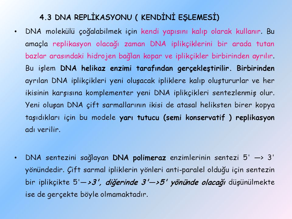 4.3 DNA REPLİKASYONU ( KENDİNİ EŞLEMESİ)