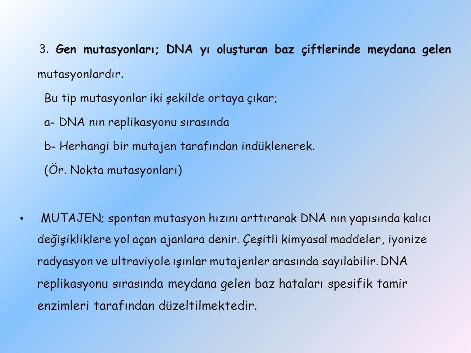 3. Gen mutasyonları; DNA yı oluşturan baz çiftlerinde meydana gelen mutasyonlardır.