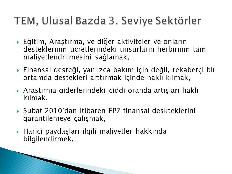 TEM, Ulusal Bazda 3. Seviye Sektörler
