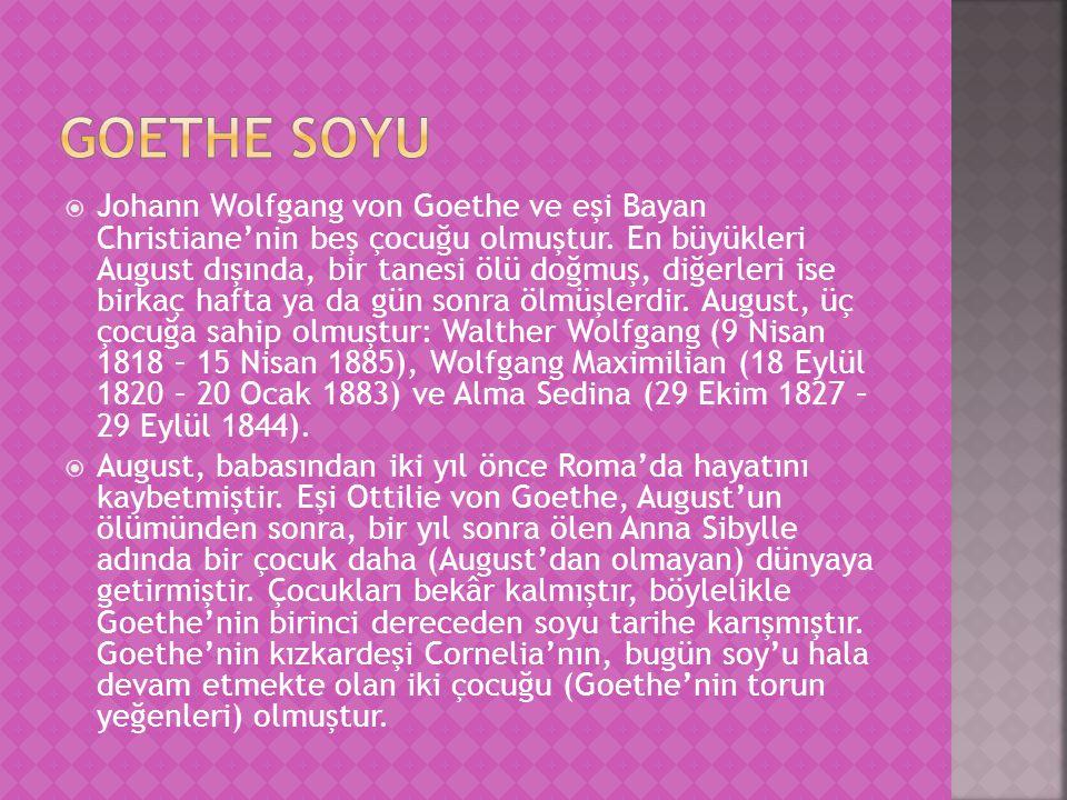 Goethe soyu
