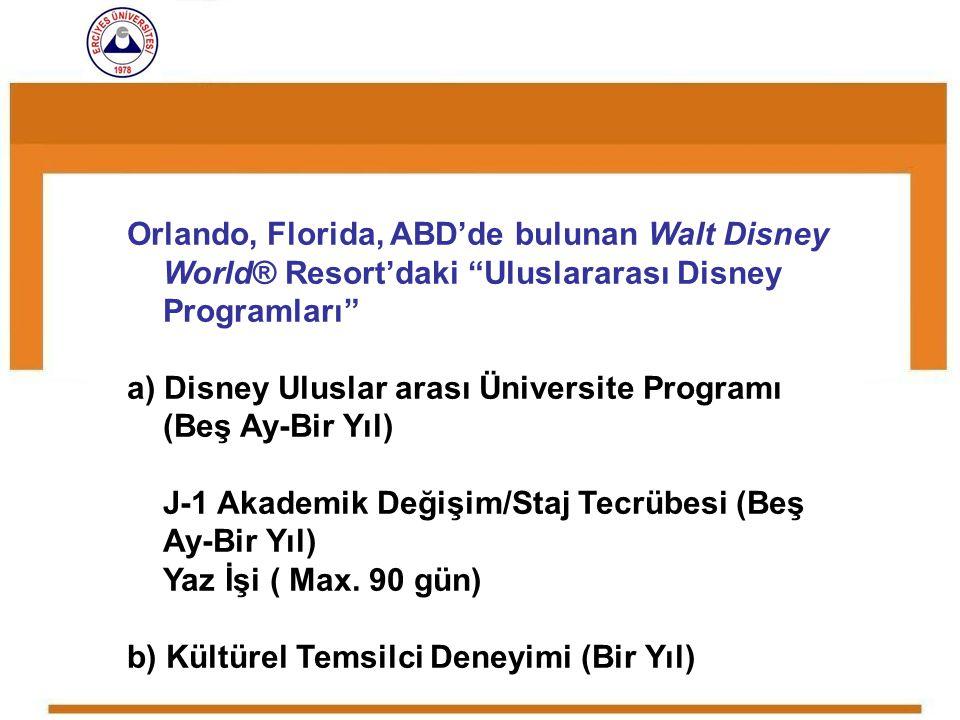 a) Disney Uluslar arası Üniversite Programı (Beş Ay-Bir Yıl)