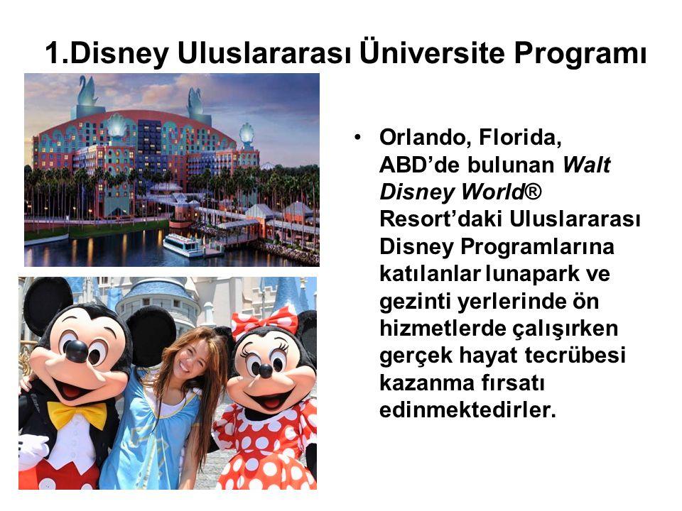 1.Disney Uluslararası Üniversite Programı