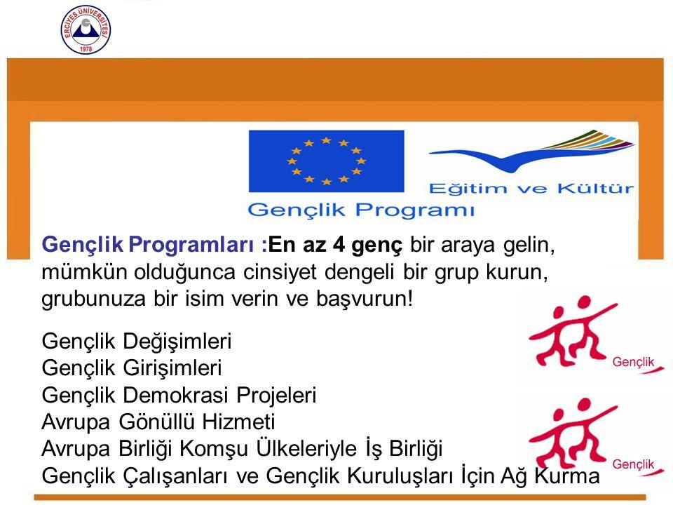 Gençlik Demokrasi Projeleri Avrupa Gönüllü Hizmeti