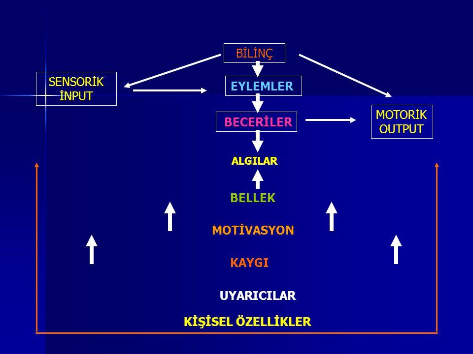 BECERİLER MOTİVASYON UYARICILAR
