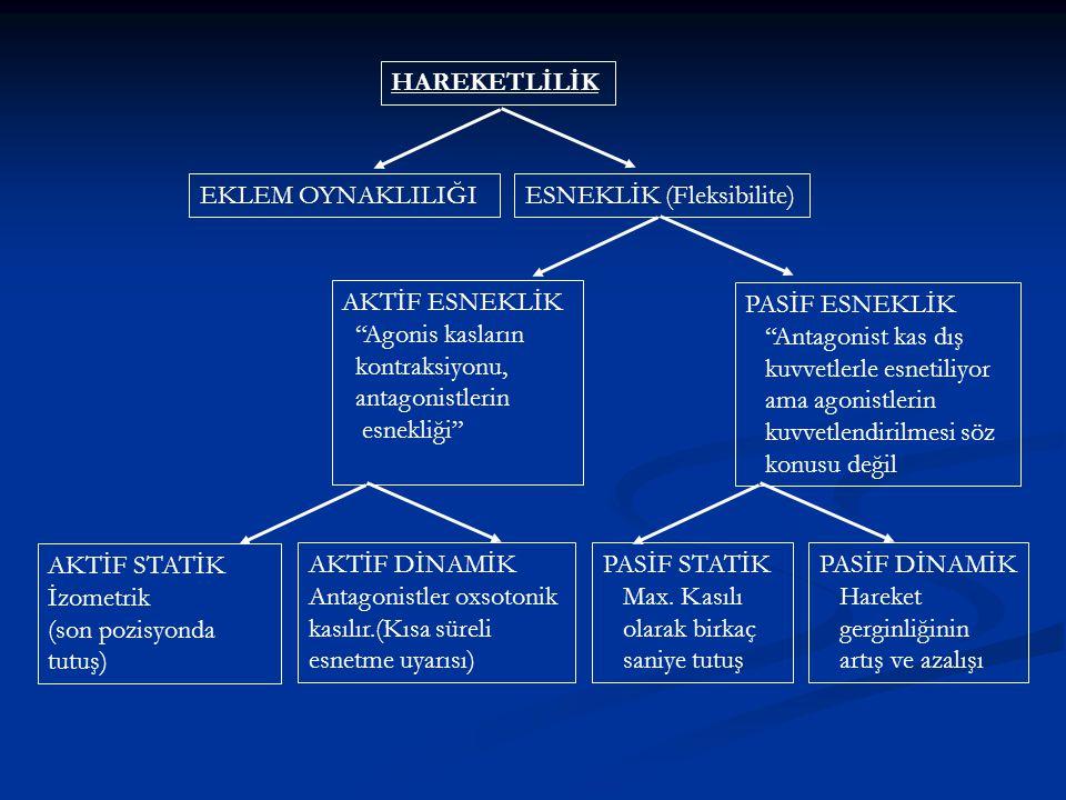 HAREKETLİLİK EKLEM OYNAKLILIĞI. ESNEKLİK (Fleksibilite) AKTİF ESNEKLİK. Agonis kasların. kontraksiyonu,