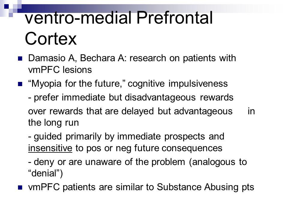 ventro-medial Prefrontal Cortex