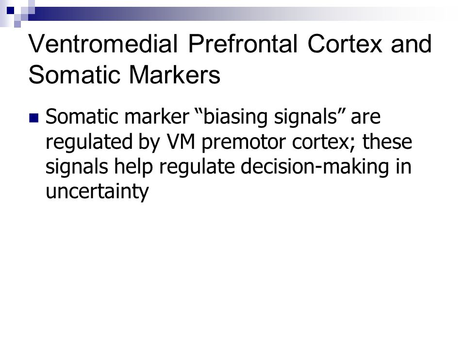 Ventromedial Prefrontal Cortex and Somatic Markers
