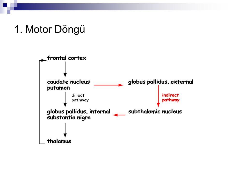 1. Motor Döngü