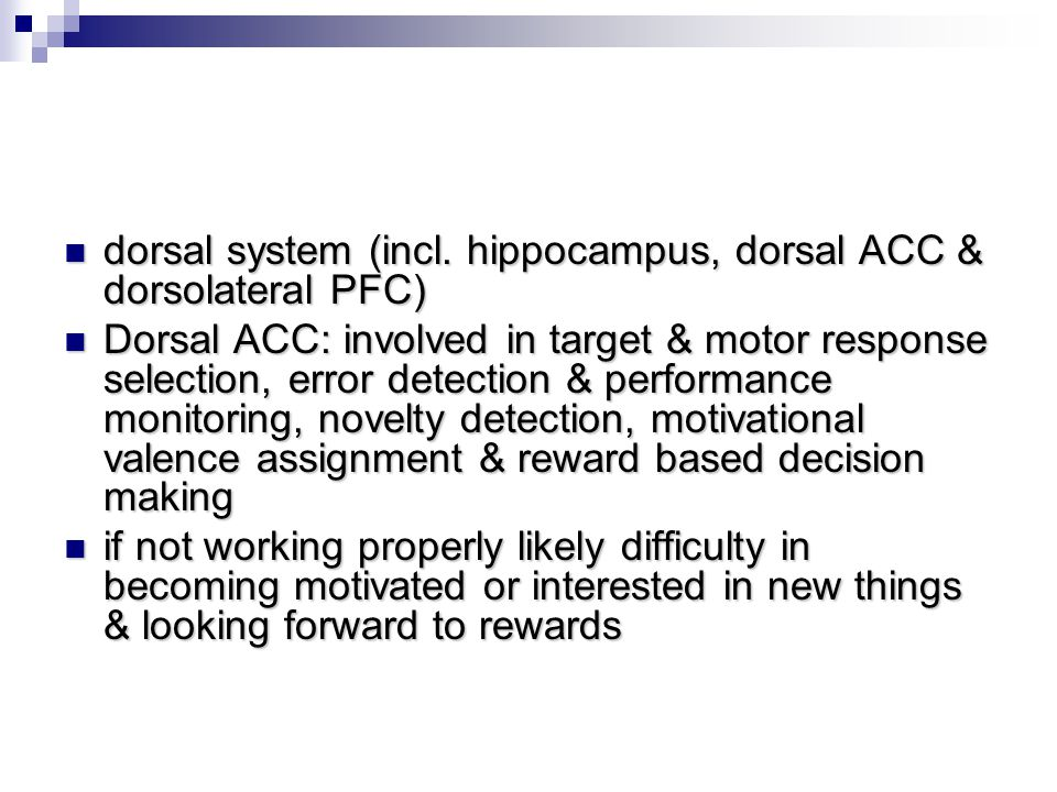dorsal system (incl. hippocampus, dorsal ACC & dorsolateral PFC)