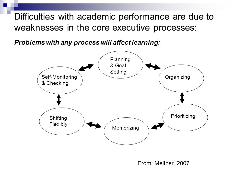 Difficulties with academic performance are due to weaknesses in the core executive processes: