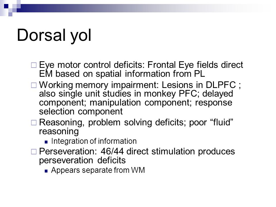 Dorsal yol Eye motor control deficits: Frontal Eye fields direct EM based on spatial information from PL.