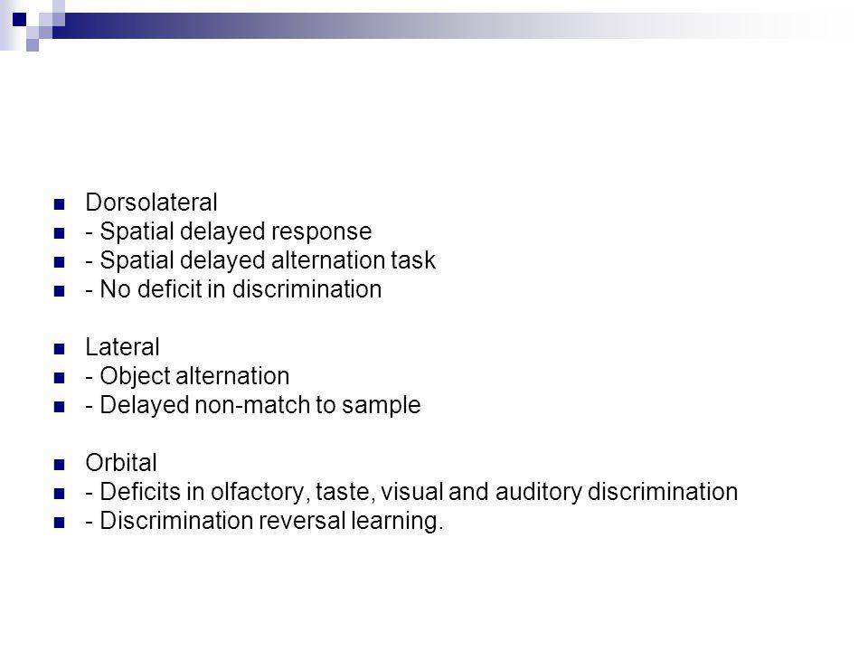 Dorsolateral - Spatial delayed response. - Spatial delayed alternation task. - No deficit in discrimination.