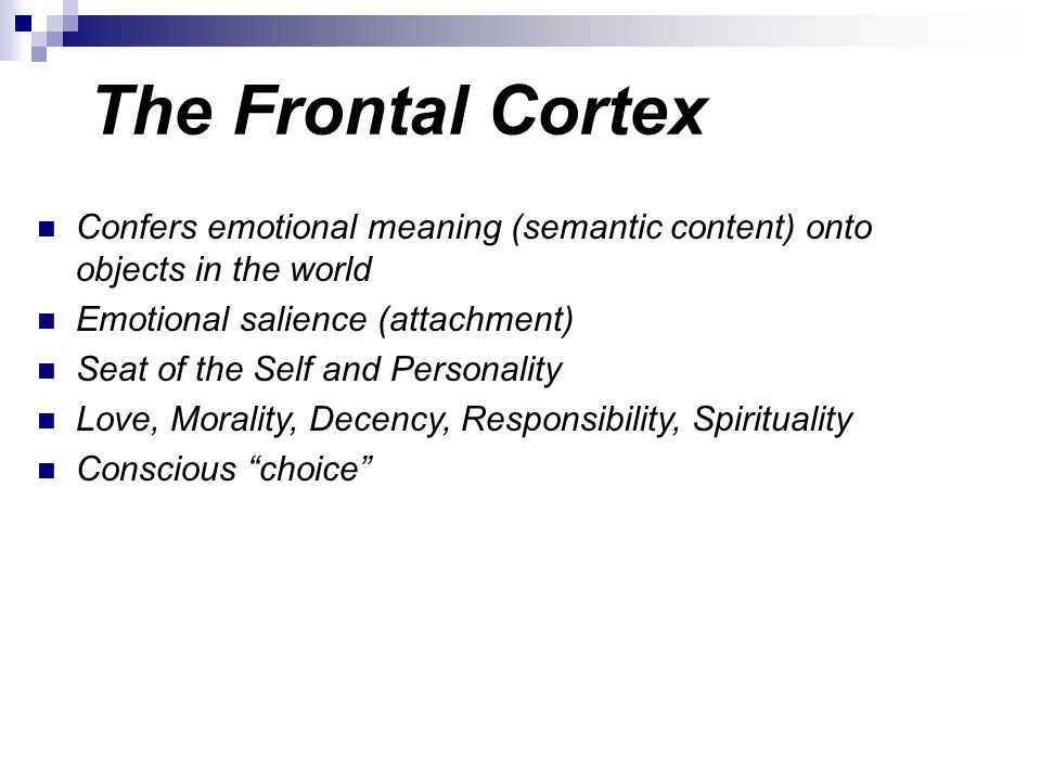 The Frontal Cortex Confers emotional meaning (semantic content) onto objects in the world. Emotional salience (attachment)