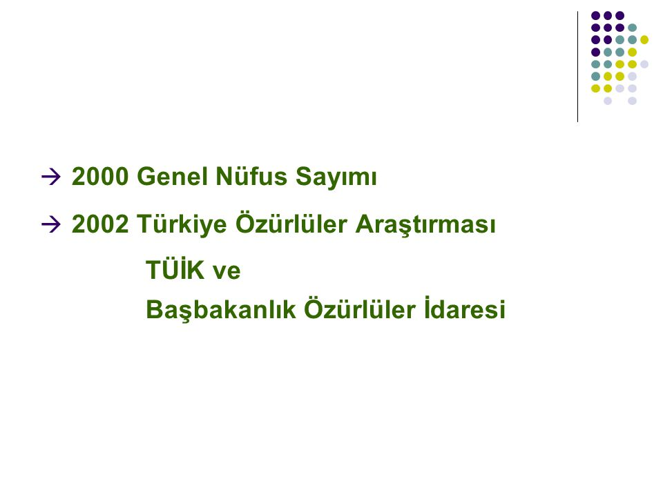 2002 Türkiye Özürlüler Araştırması TÜİK ve