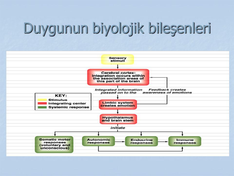 Duygunun biyolojik bileşenleri