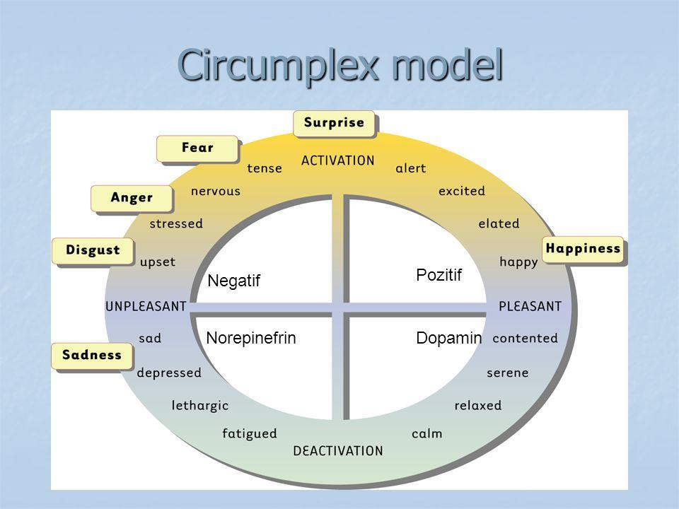 Circumplex model Pozitif Negatif Norepinefrin Dopamin