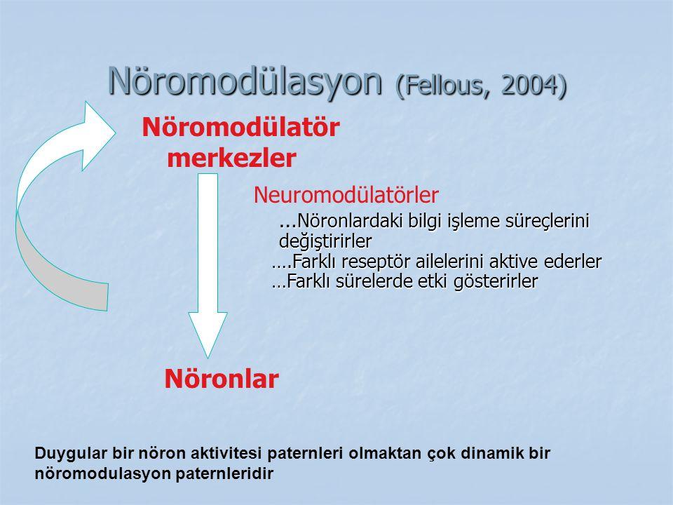 Nöromodülasyon (Fellous, 2004)