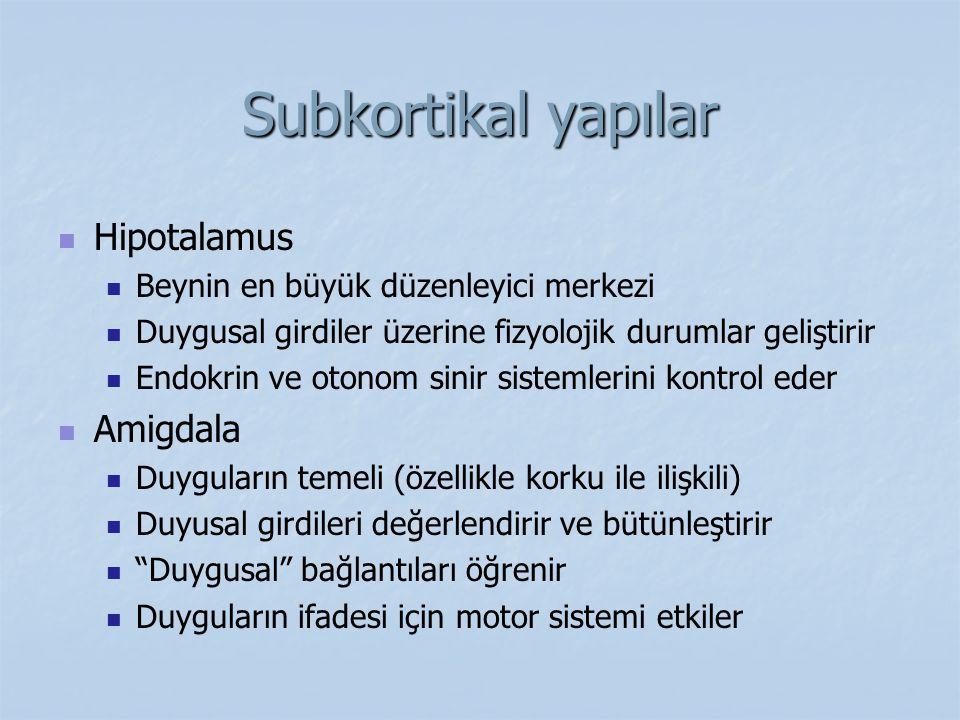 Subkortikal yapılar Hipotalamus Amigdala