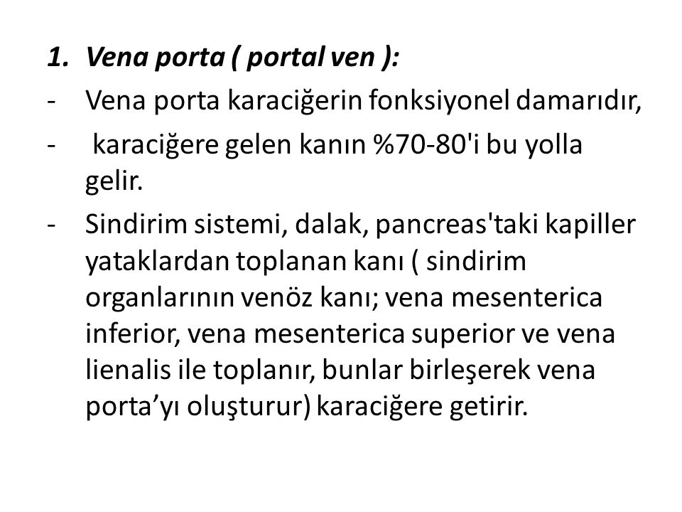 Vena porta ( portal ven ):