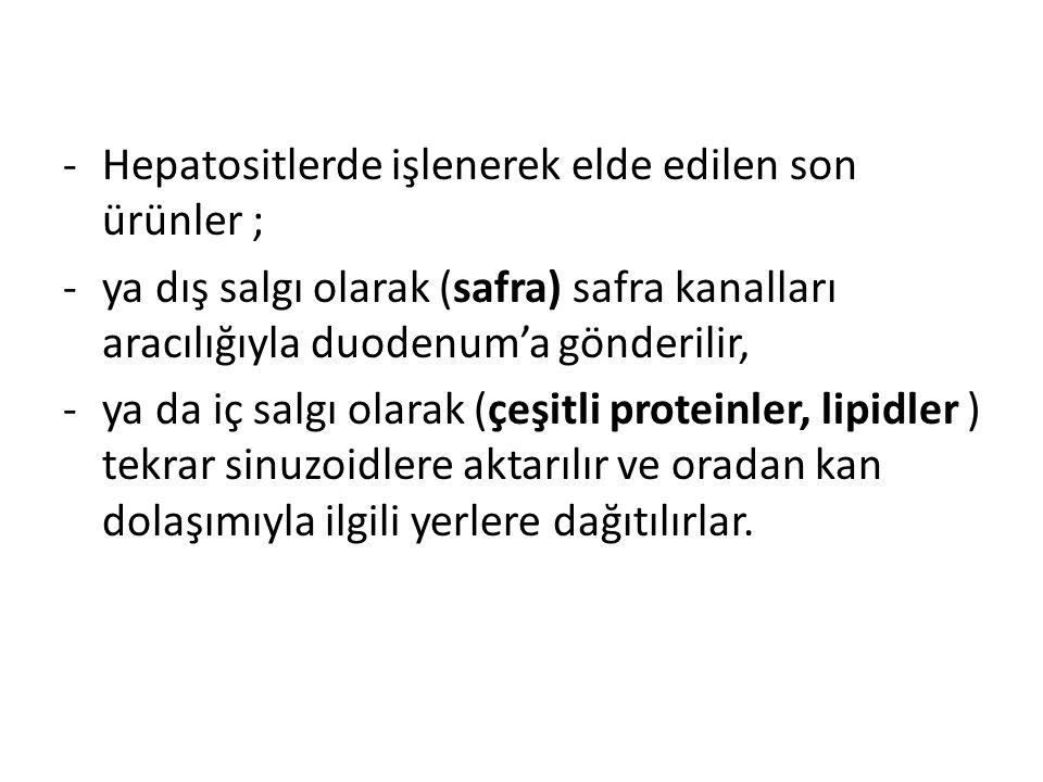 Hepatositlerde işlenerek elde edilen son ürünler ;