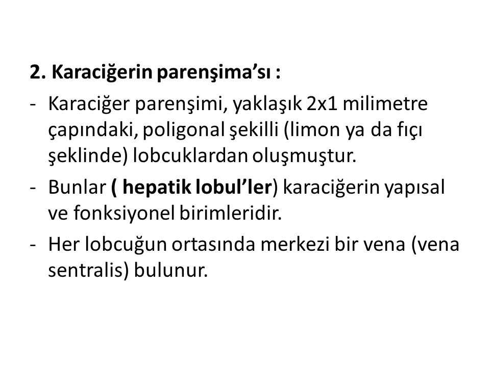2. Karaciğerin parenşima'sı :