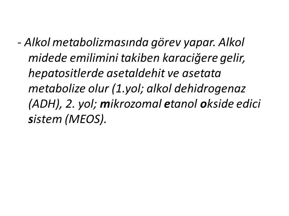 - Alkol metabolizmasında görev yapar
